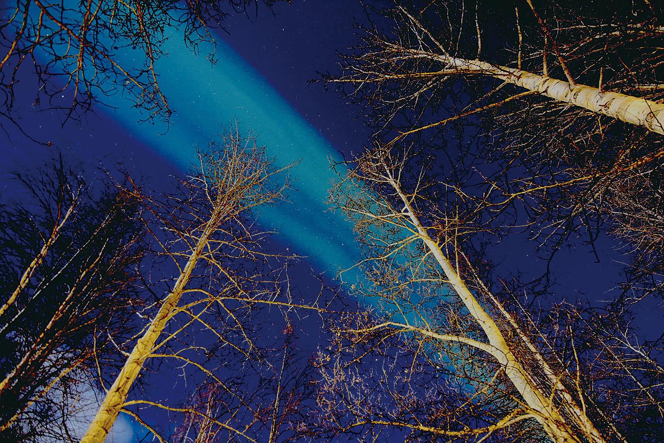 費爾班克斯出現的極光。(魯爾提供)