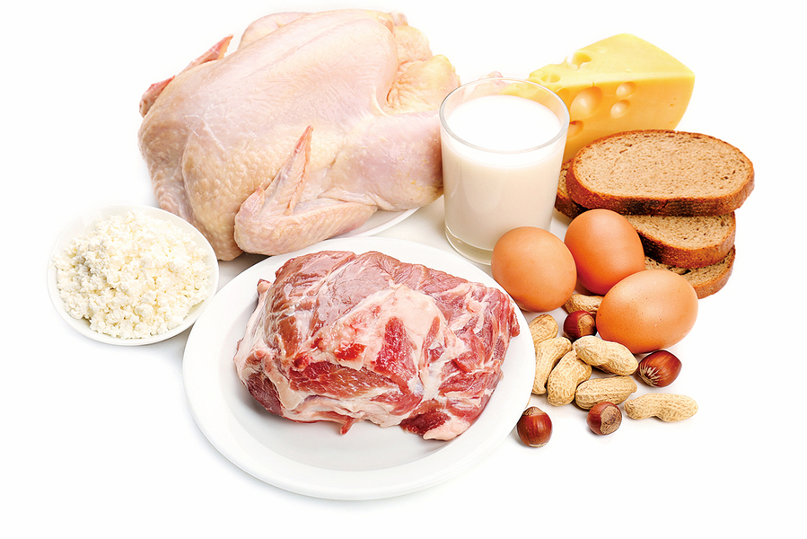 蛋白質吃太多  腎臟受不了
