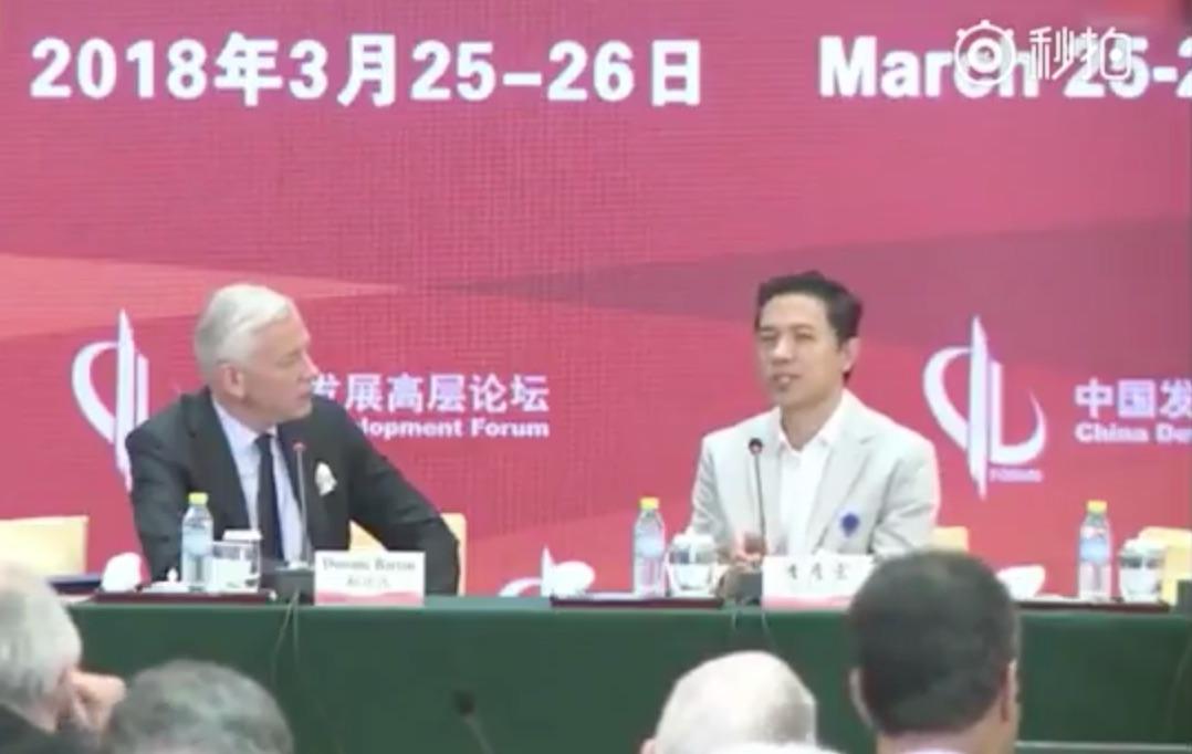 李彥宏和IBM董事長羅睿蘭同場出席中國發展高層論壇。(視像擷圖)