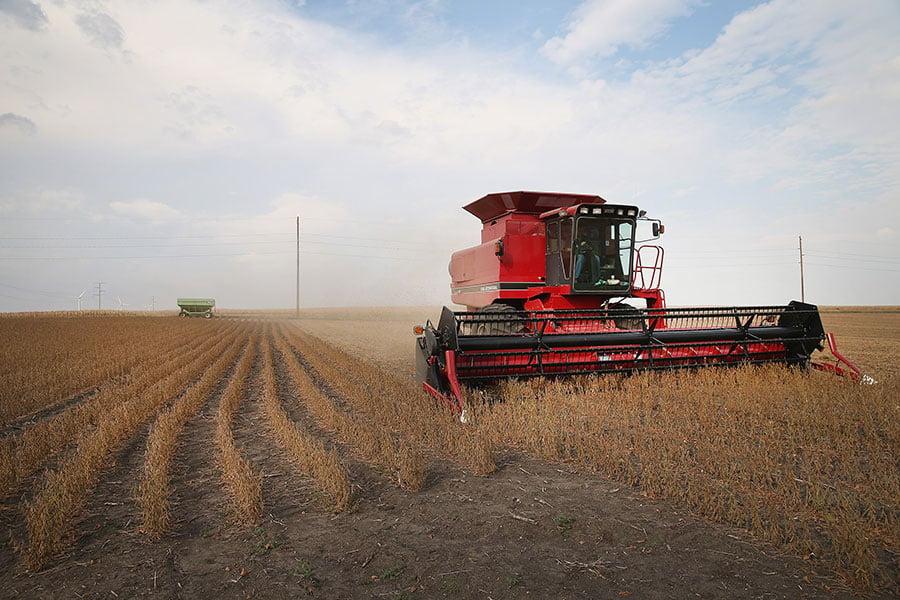 在中美貿易爭端中,美國大豆成為中共的打擊目標。(Scott Olson/Getty Images)