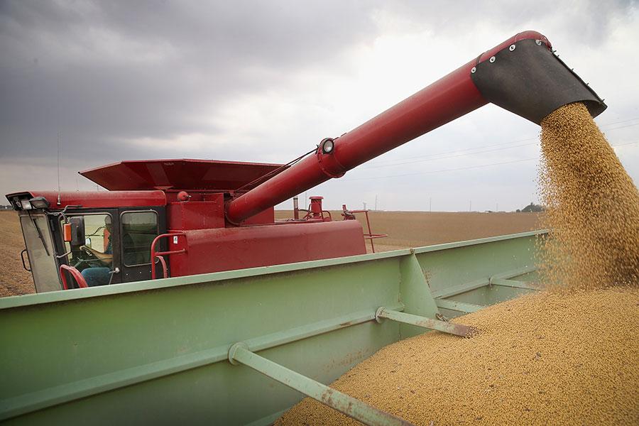 圖為美國明尼蘇達州一個生產大豆的農場。(Scott Olson/Getty Images)