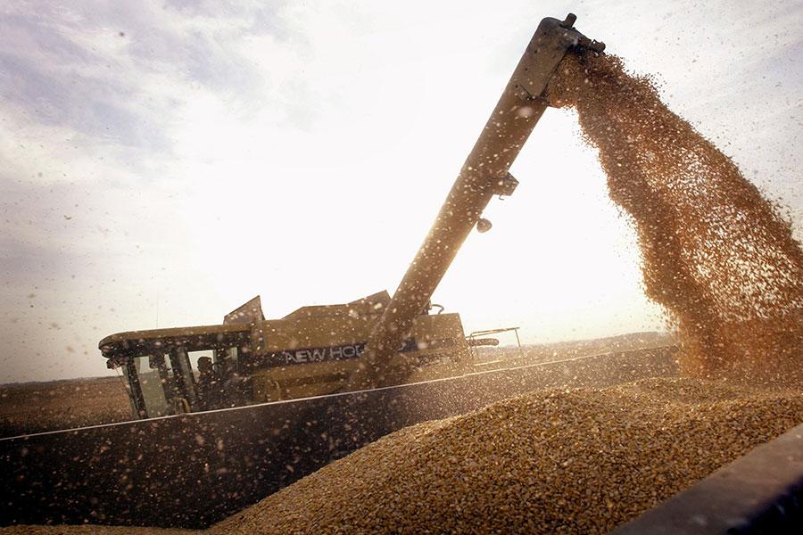 在中共對美國大豆加徵25%關稅之後,它將難以找到替代品,這可能給國內公司帶來嚴重財務困難,以及造成國內食品價格上漲,可能引發民怨。(Scott Olson/Getty Images)
