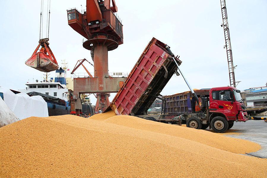 中共打錯牌? 阿根廷等國大量訂購美國大豆
