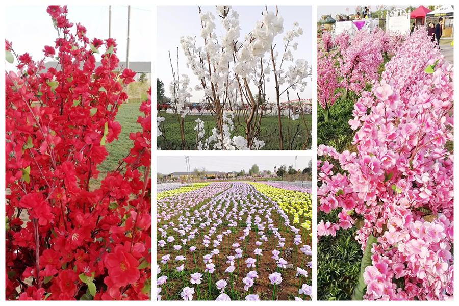 洛陽薰衣草莊園裏面宣傳的花海,被曝大部份都是塑膠做的假花。(網絡圖片/大紀元合成)