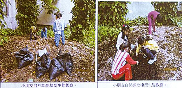「落葉的家」成為小朋友自然科地棲型生物觀察區。(曾晏均翻攝/大紀元)