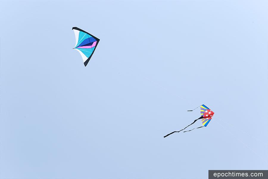 Haiven設計的風箏「藍精靈」(左上)尺寸適中,展開約有1.5平方米,適合初學者放飛。(陳仲明/大紀元)