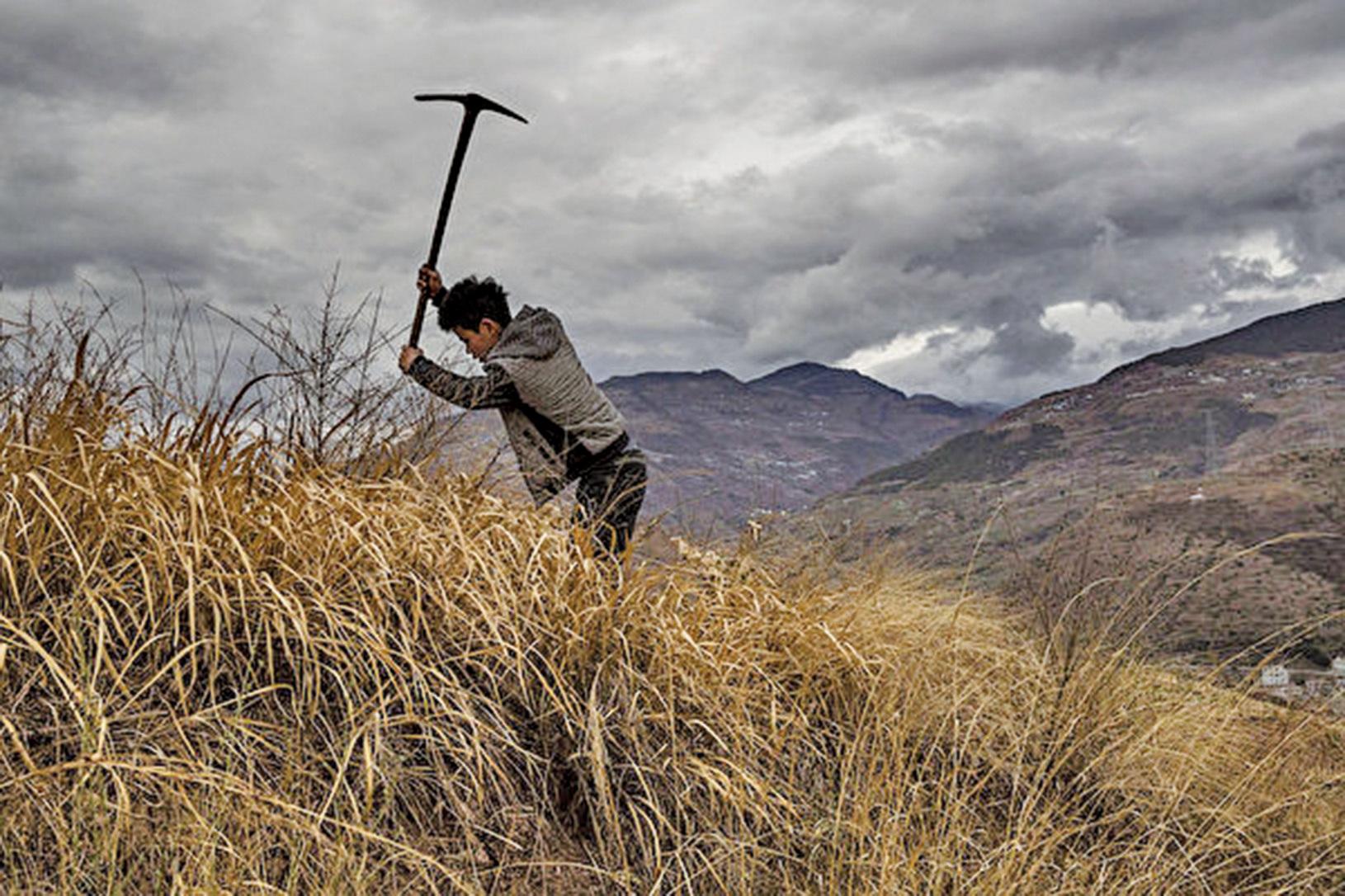 中共農業農村部長在博鰲亞洲論壇上的講話中,隱晦指出中國農村目前的「蕭條」和「凋敝」現狀。(Getty Images)