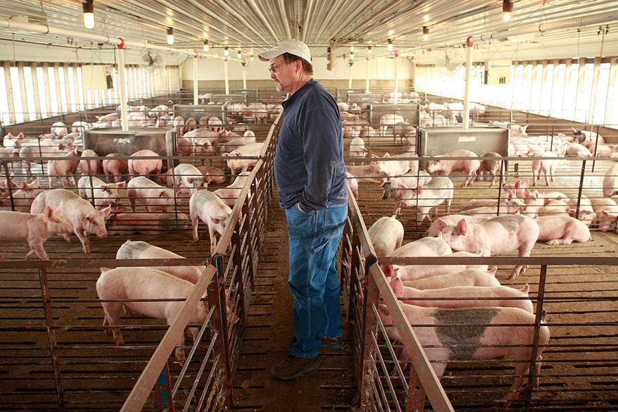 上周中共對美國農產品加徵關稅,報復華府上個月底實施的鋼鋁稅。為補救遭受損失的農民,特朗普政府計劃採行類似1930年代大蕭條時期的做法,投入數百億美元援助資金,以穩定農民收入。(Scott Olson/Getty Images)