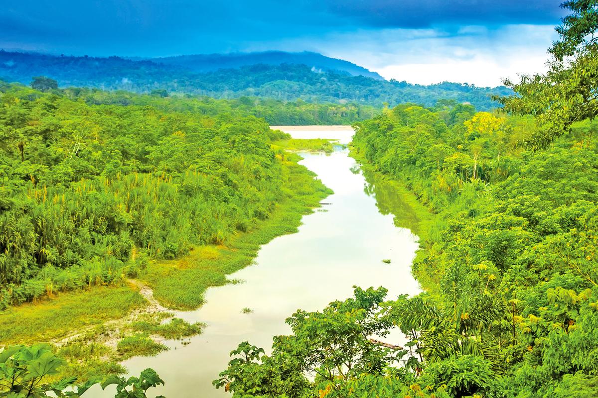 被稱為「地球之肺」的亞馬遜雨林。