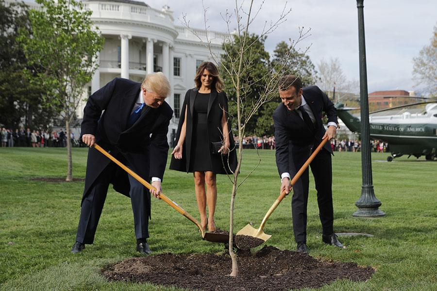 特朗普和馬克龍在白宮南草坪種下友誼之樹。(Chip Somodevilla/Getty Images)