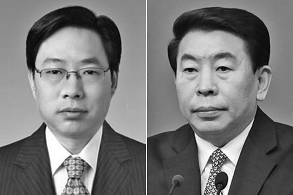 中共國家能源局副局長王曉林被「雙開」。(網絡圖片)