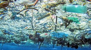 太平洋垃圾帶超預期 面積達1400個香港