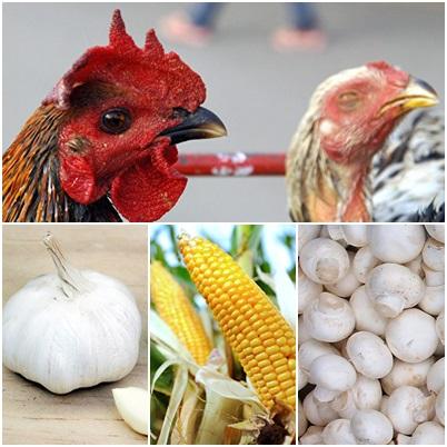 美國媒體報道指,有7種從中國大陸進口的食品,食後對人體有害,甚至致癌。(大紀元合成圖)