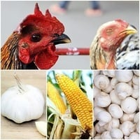美媒警告:中國這七種食品不能吃