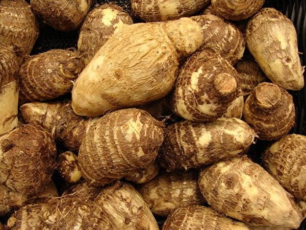 將芋頭剝皮後用大量有害的二氧化硫浸泡漂白。(維基百科公共領域)