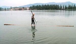 杭州男子毛竹渡江 「水上漂」重出江湖