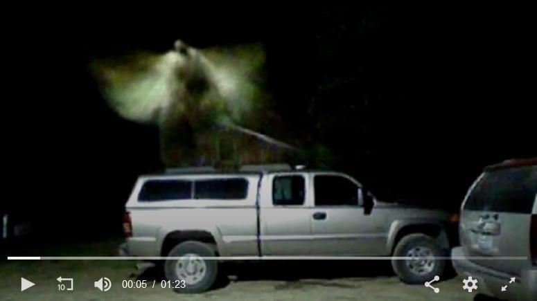 美監視器拍到有頭有翅膀的「天使」