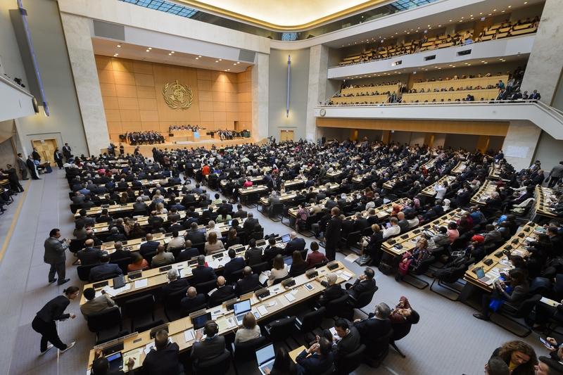繼歐美後 日本挺台參與世衛大會