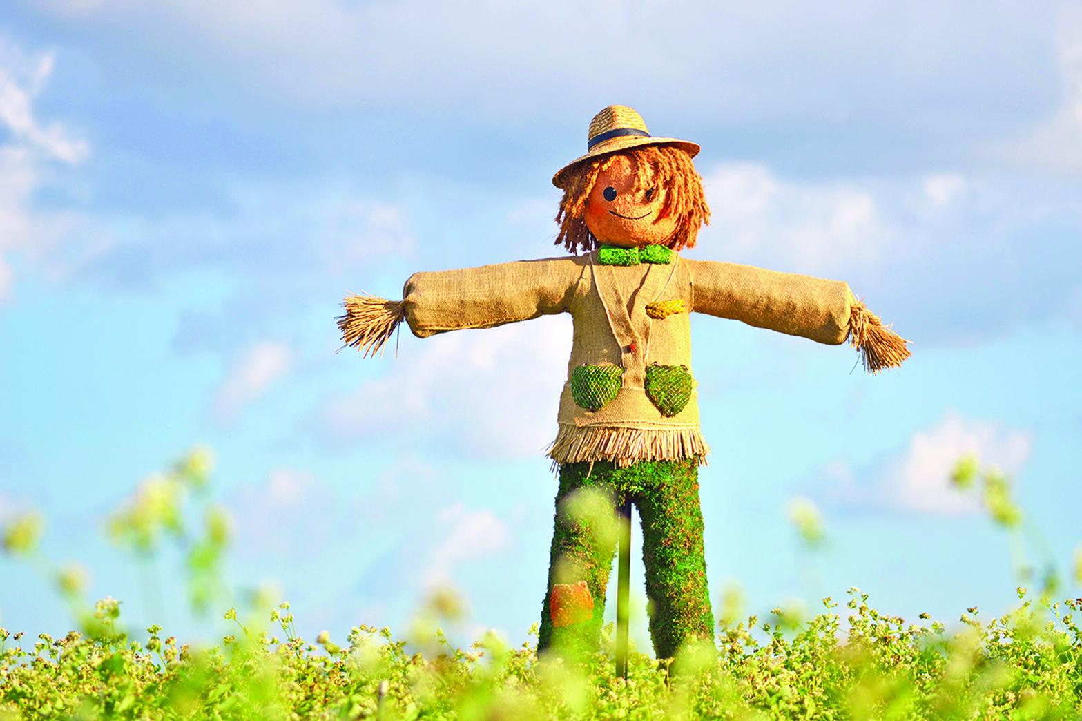 ……我們鬥的地主一直就是這個草人,剛開始,草人紮得很像很像,後來,每開一次會,草人就變一次樣……
