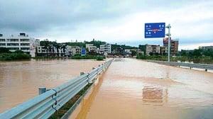 【圖片新聞】廣東暴雨200年一遇  55萬人受災