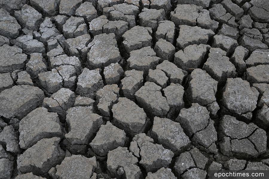 塘底的大片土壤呈現深刻的龜裂紋。(陳仲明/大紀元)