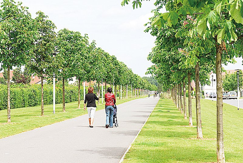 生態環境不堪重負歐洲城市尋求綠化
