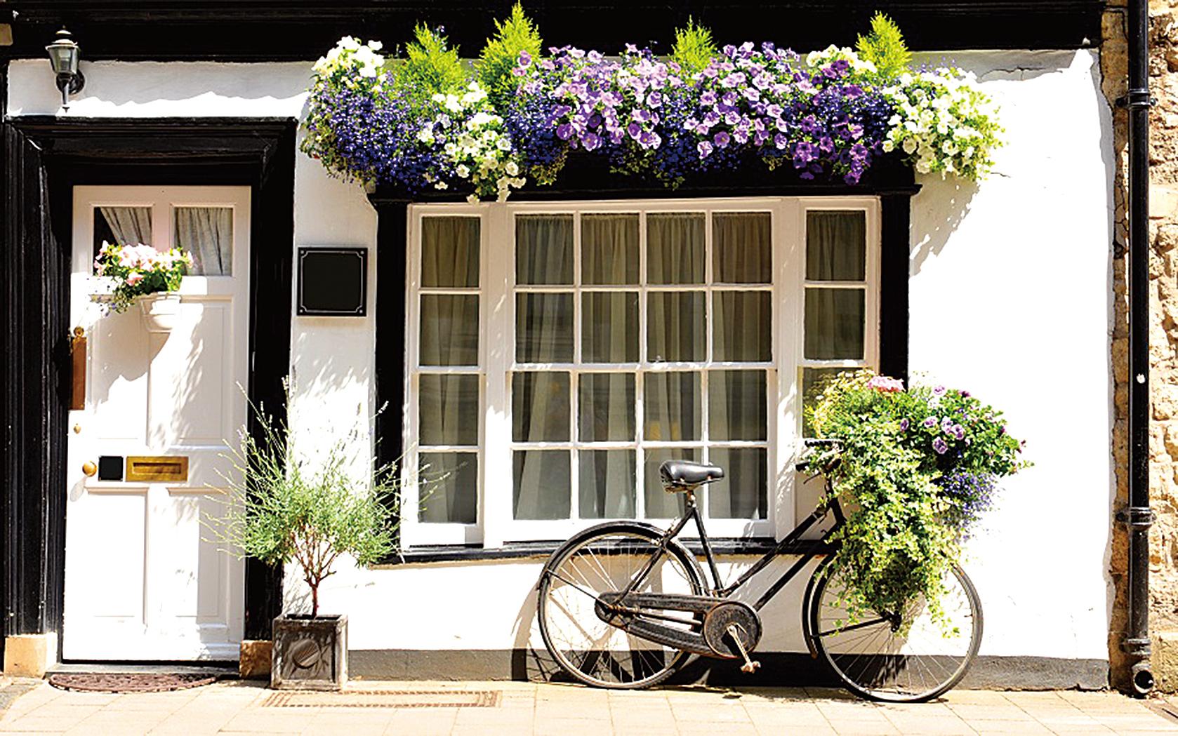 英國劍橋、民居、單車、鮮花(Depositphotos)