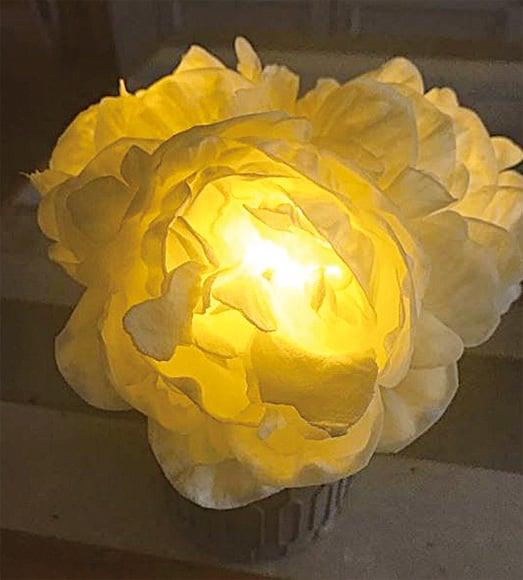 鄭秀文昨日(6日)在IG貼文並貼上白花燈飾悼念林燕妮。(鄭秀文IG)