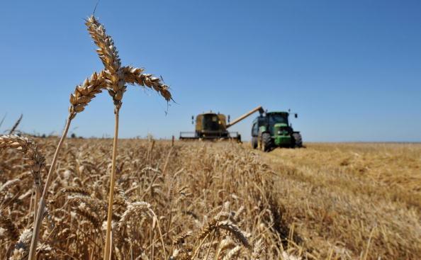法新社報道,目前很少有美國農民指責特朗普,而且特朗普得到了美國民主黨領袖舒默(Charles Schumer)的支持。(Getty Images)