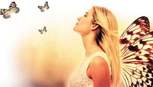 《生活隨筆》蝴蝶