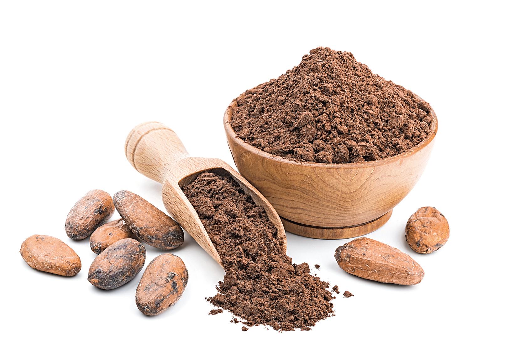 可可能夠製成可可粉,跟朱古力一樣含有類黃酮。
