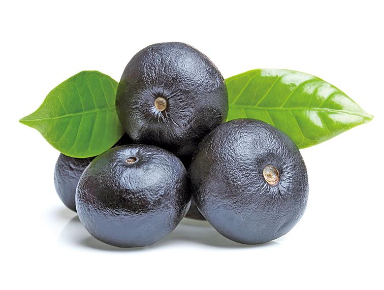 長得很像藍莓的巴西莓,又被稱作阿薩伊。