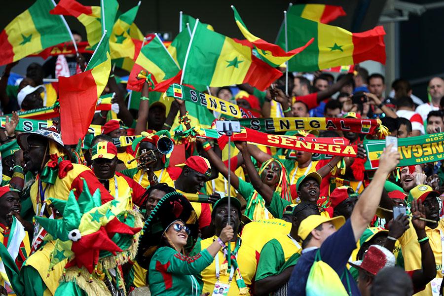 塞內加爾為非洲球隊拿下本屆世界盃首勝,也延續了自己在小組賽首場亮相就贏得比賽的紀錄。(Catherine Ivill/Getty Images)