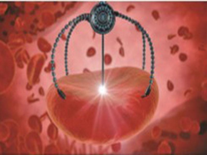加州大學的研究者們發明了一種利用超聲波驅動納米金棒,在血液中清除細菌和毒素的方法。(ShutterStock)