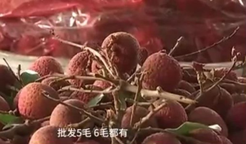 今年夏季,中共大量從巴基斯坦進口水果,渲染中巴友誼有多「鐵」。同時,中國的水果嚴重滯銷卻沒人管,廣西的荔枝因滯銷價格已跌至5毛一斤。(視像擷圖)