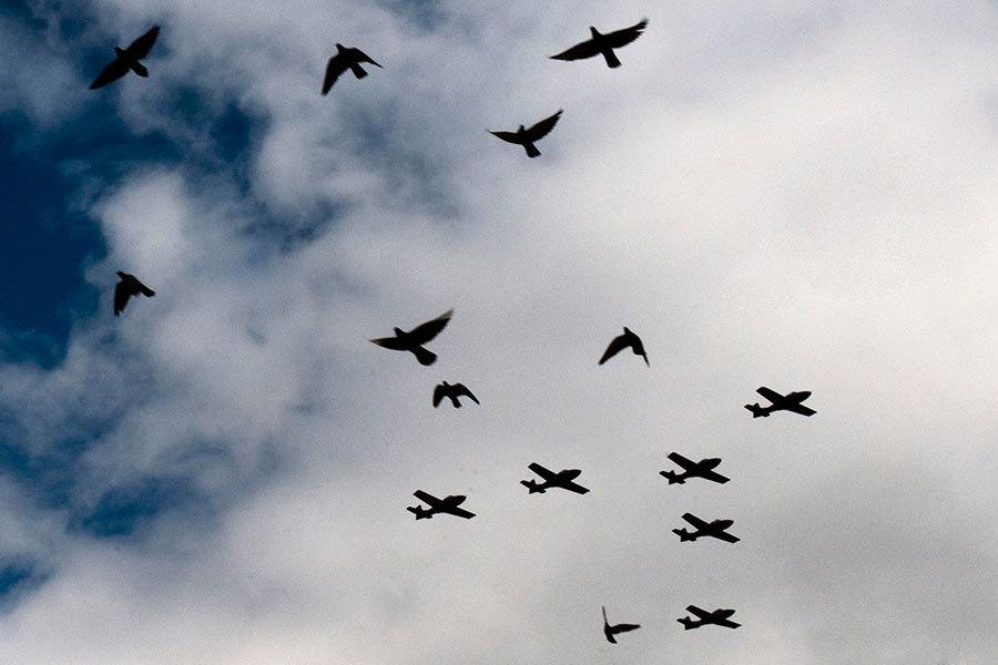 中共部署「機器鴿子」監控民眾