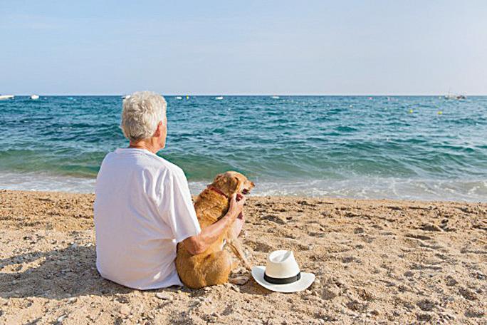 澳洲蒙納殊大學的研究發現,有小狗相伴可使心率降低,有益心臟健康,而且小狗的心率還會與主人同步。圖為一名男子與小狗坐在海邊。(Fotolia)