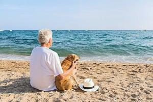 養狗會使主人心率降低更健康