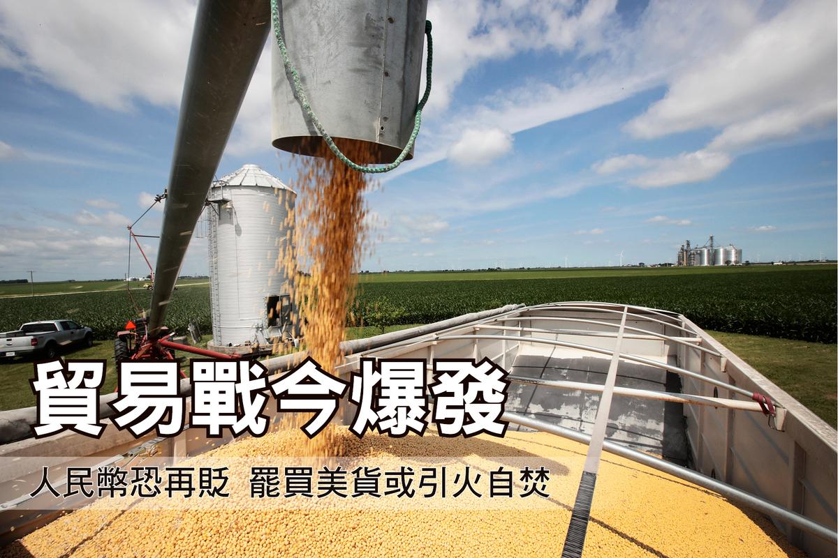 7月6日,美中兩國或將互祭關稅。圖為中方將徵稅的其中一項美方農產品黃豆。(Scott Olson/Getty Images)