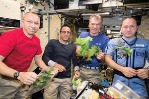 裝設LED燈 提供太空人新鮮蔬菜