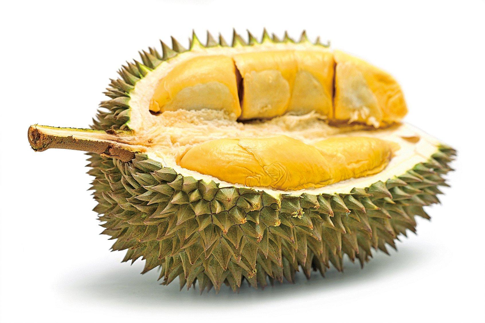 榴槤在東南亞被譽為「水果之王」,肉色淡黃且黏稠多汁。