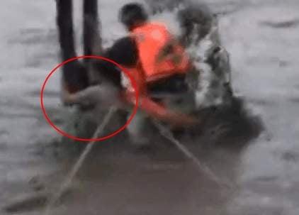 紅圈內的女子被洪水圍困,緊抱大樹求生。(視像擷圖)