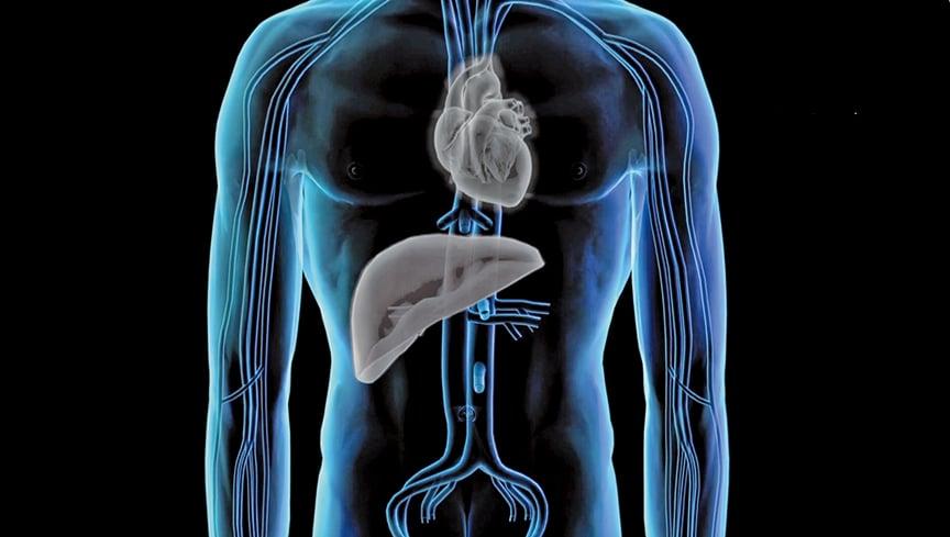 追查國際組織最新公佈了100份暗房錄音,顯示中國器官移植行業依然黑幕重重,仍有大量用於手術的器官來源不明。(影片截圖)