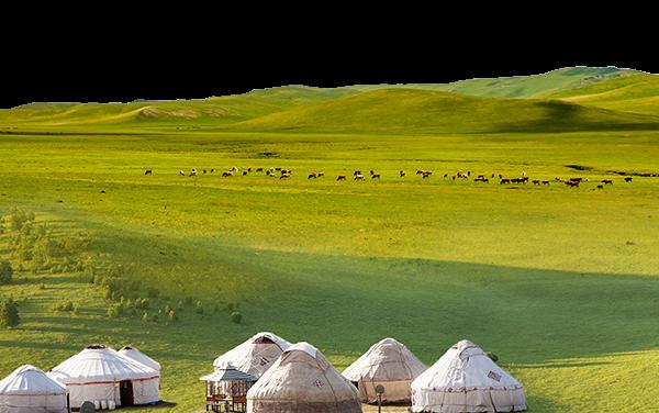 跟著大汗的戰馬馳騁草原