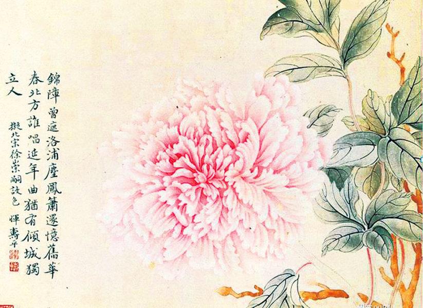 活色生香滿庭芳 惲壽平的牡丹花(二)
