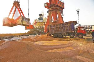 美中貿易戰陸大豆商嚐苦果