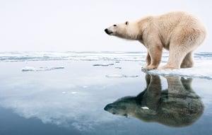 4大洲發燒北極高達32℃