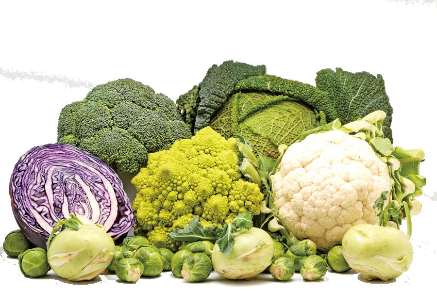這4種菜生吃可能中毒