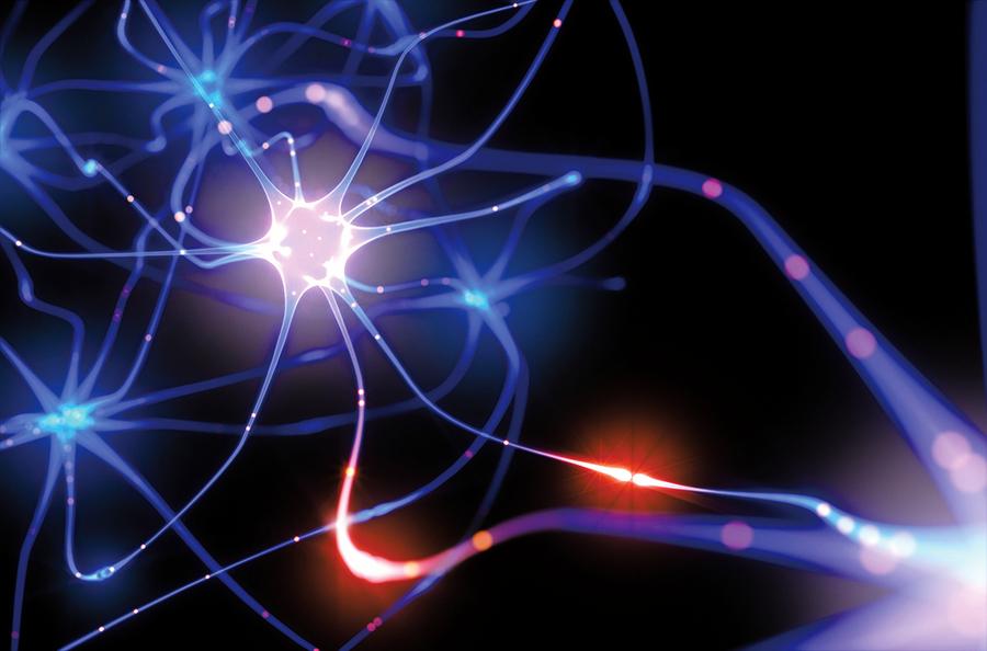 科學家為「頭腦晶片」設計人工突觸
