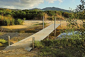 泥灘上跨越鴨仔坑的小橋。